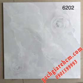 60x60 Loại AA - World tile