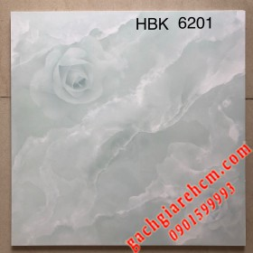 60x60 World Tile - loại AA