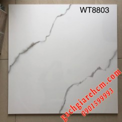 80x80 World Tile - Loại 2